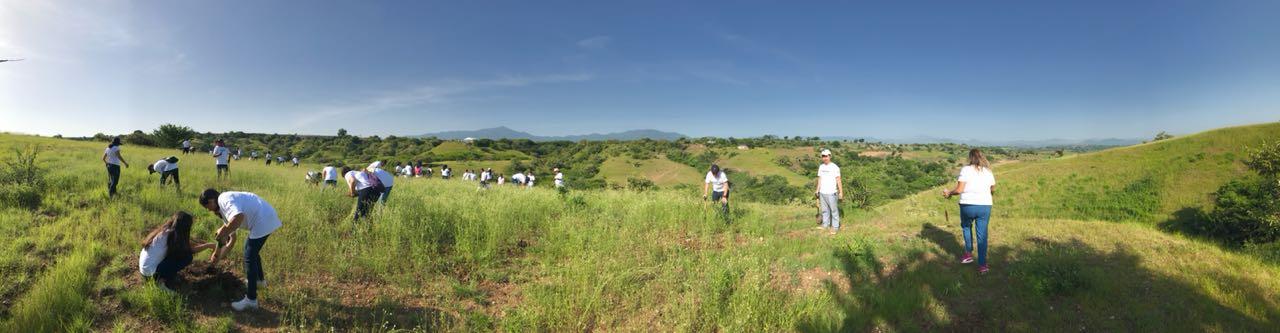 Sekisui S-Lec México lleva a cabo su reforestación 2018
